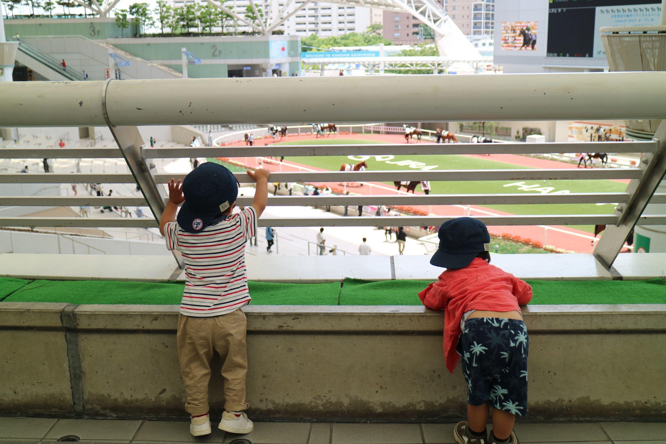 動物好きの子どもに競馬場おでかけ