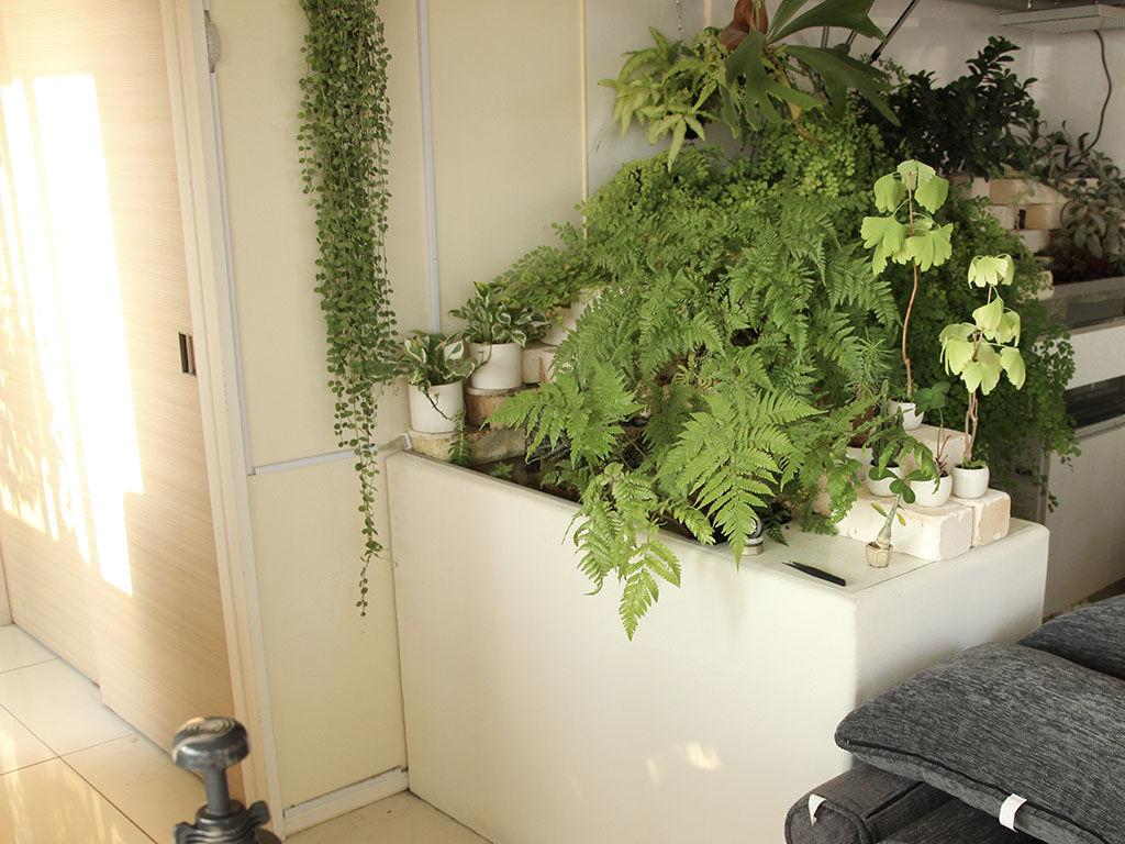 オフィスの入り口に設置された水苔スタンド