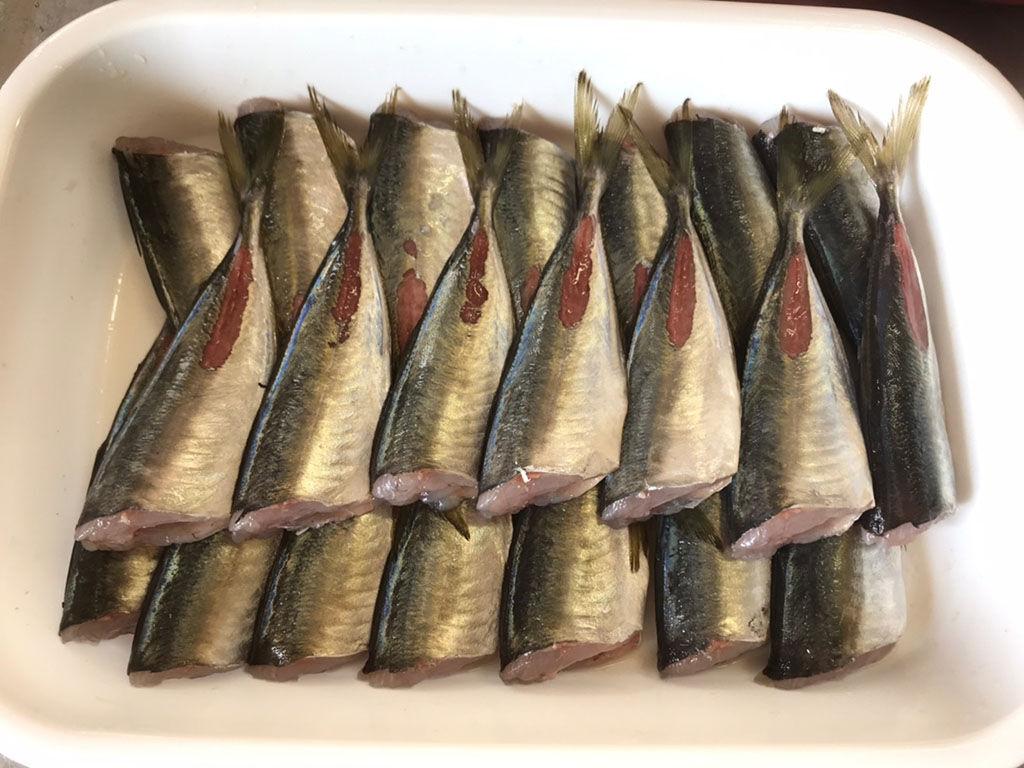 40匹の魚を黙々とさばく