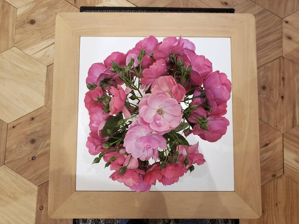 ロサ・ガリカと思われる綺麗な薔薇