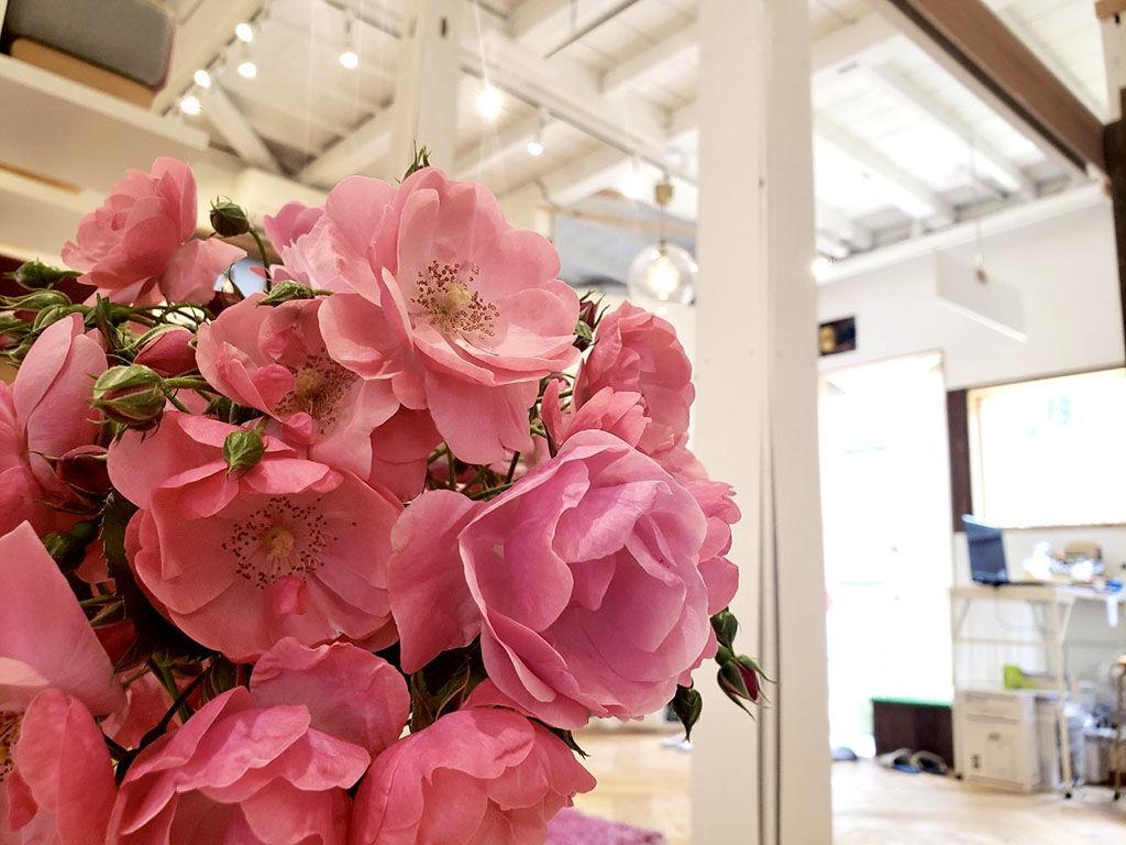 香り高く華やかな薔薇