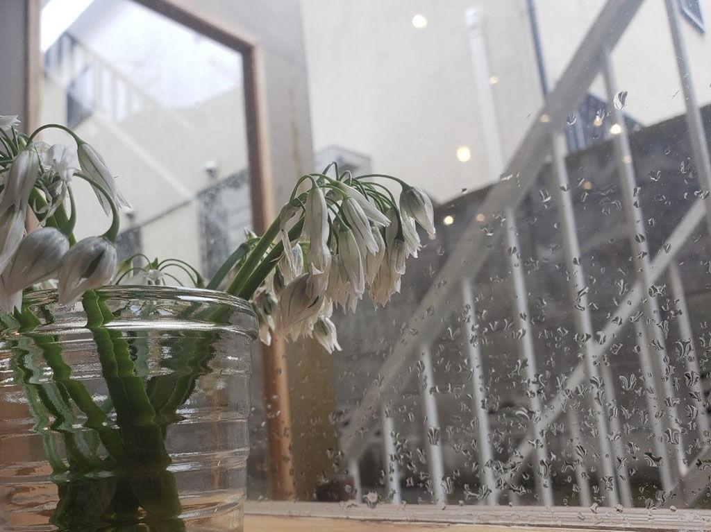 雨降りの下北沢